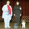 ''Sparkie'' taking first place in obedience